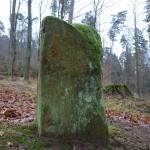 Ri011 Buchbacherhof