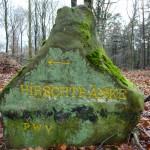 Ri013 Hirschtraenke