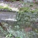 Ri048 Wolfsgrub 105Schr
