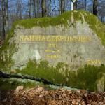 Ri108 Haidhaldbrunnen 220Schr