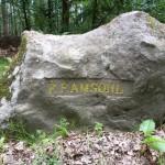 Ri114 R-F- Amsohl