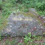 Ri155 Wasserstein