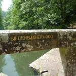 Ri156 Biedenbacherwoog