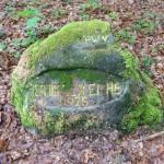 Ri168 An der dicken Eiche 1925