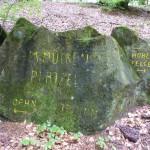 Ri203 Am Muecken-Plaetzel 390 ue NN