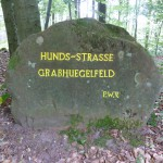 Ri244 Hunds-Strasse-Grabhuegelfeld