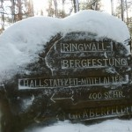 Ri252 Ringwall